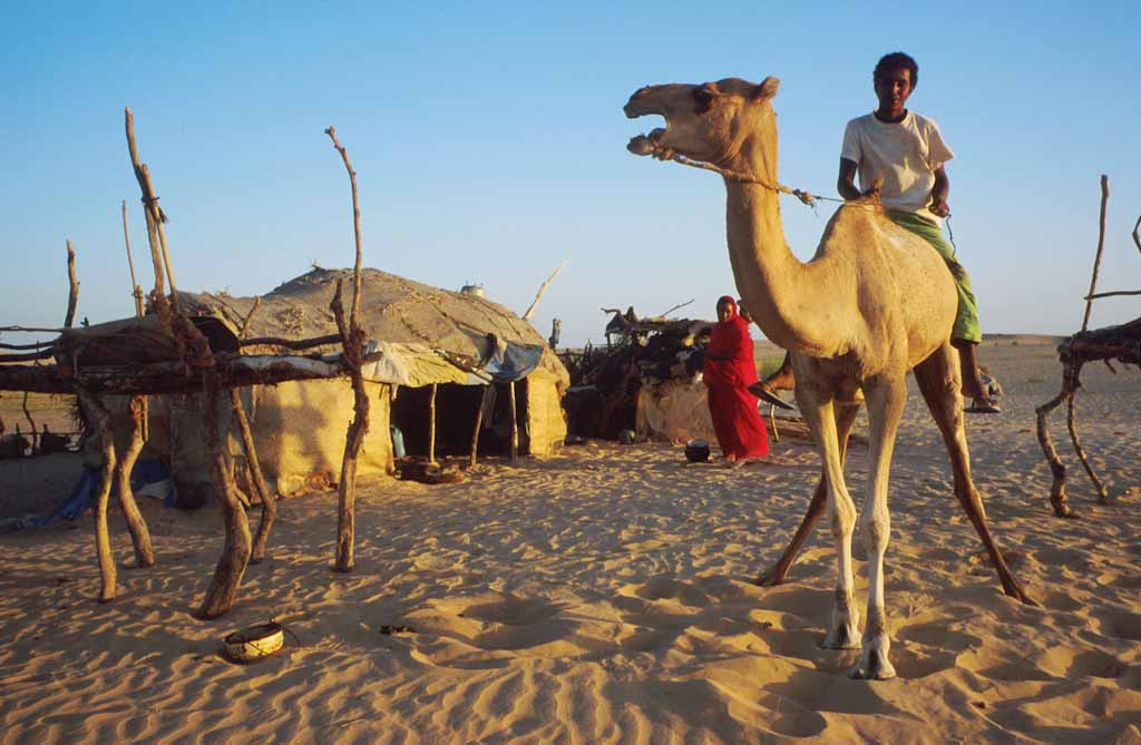 Mali's Touareg  boy sits on the camel of the nomadic family in the Sahara desert near Tombouctou, Mali October 1999 © Francois Lenoir